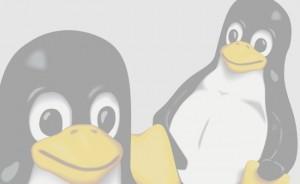 Soluções utilizando Software Livre e de Código Aberto